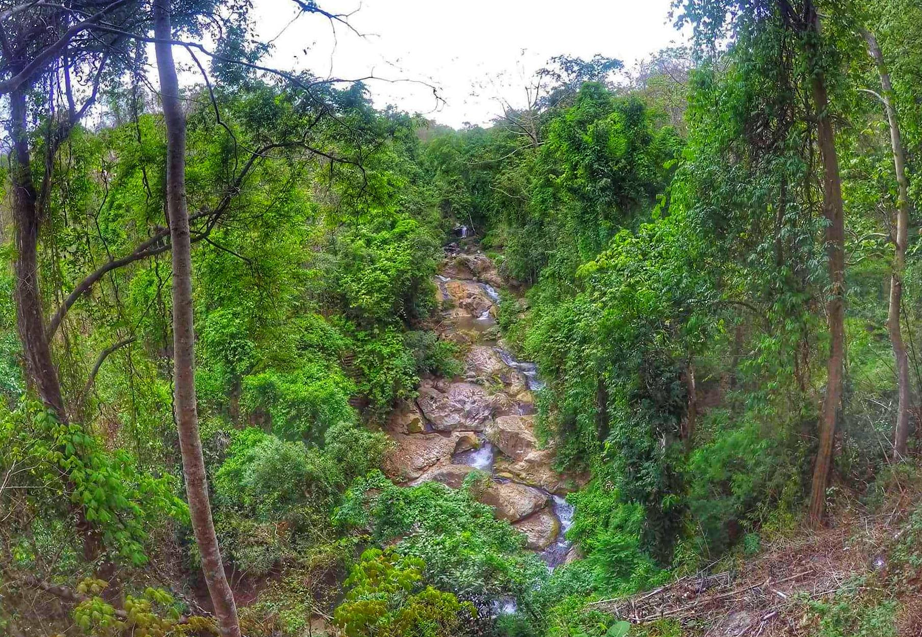 Mae Sa Waterfall - attractions in Chiang Mai for visiting
