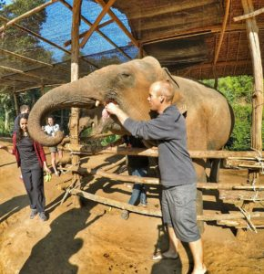 feed elephants at Jungle Sanctuary - Chiang Mai, Thailand