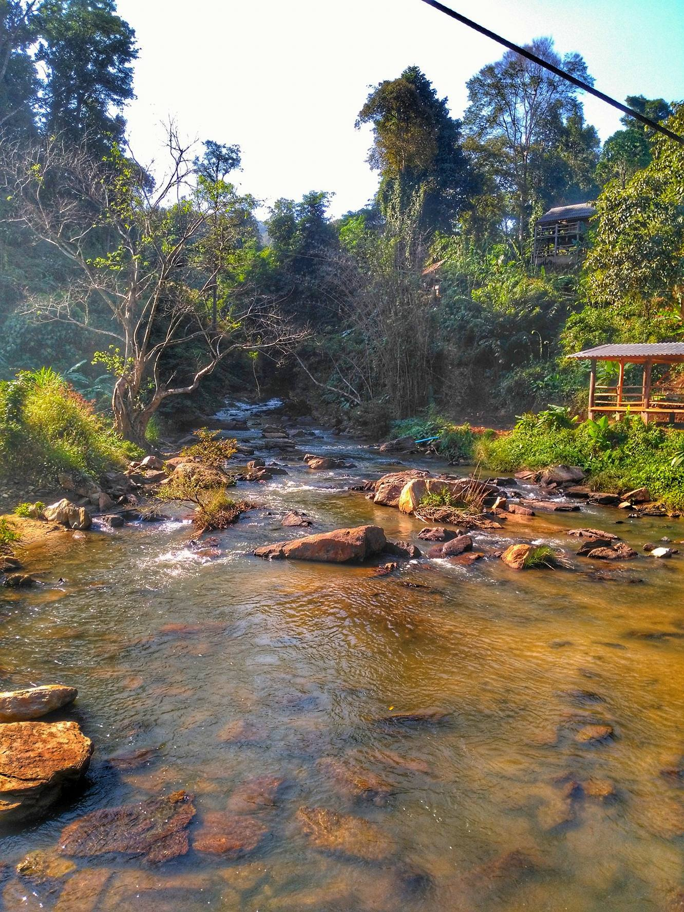 river at the Elephant Jungle Sanctuary - Chiang Mai, Thailand