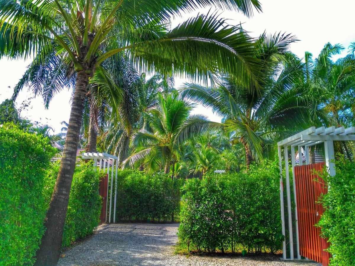 Alisea Pool Villa near Ao Nang Beach, Thailand -property grounds