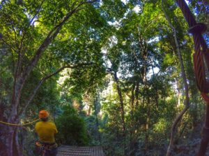 Chiang Mai zipline jungle canopy