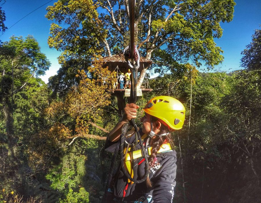 zipline canopy - Flight Of The Gibbon Chiang Mai