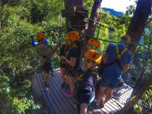 zipline group in canopy - Flight Of The Gibbon
