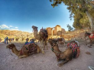 Best Time To Visit Jordan - Petra In March