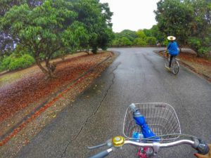 cycling in orchard - local tours Chiang Mai Thailand