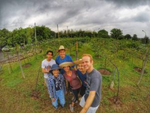 local tour guide in Chiang Mai vineyard -TakeMeTour