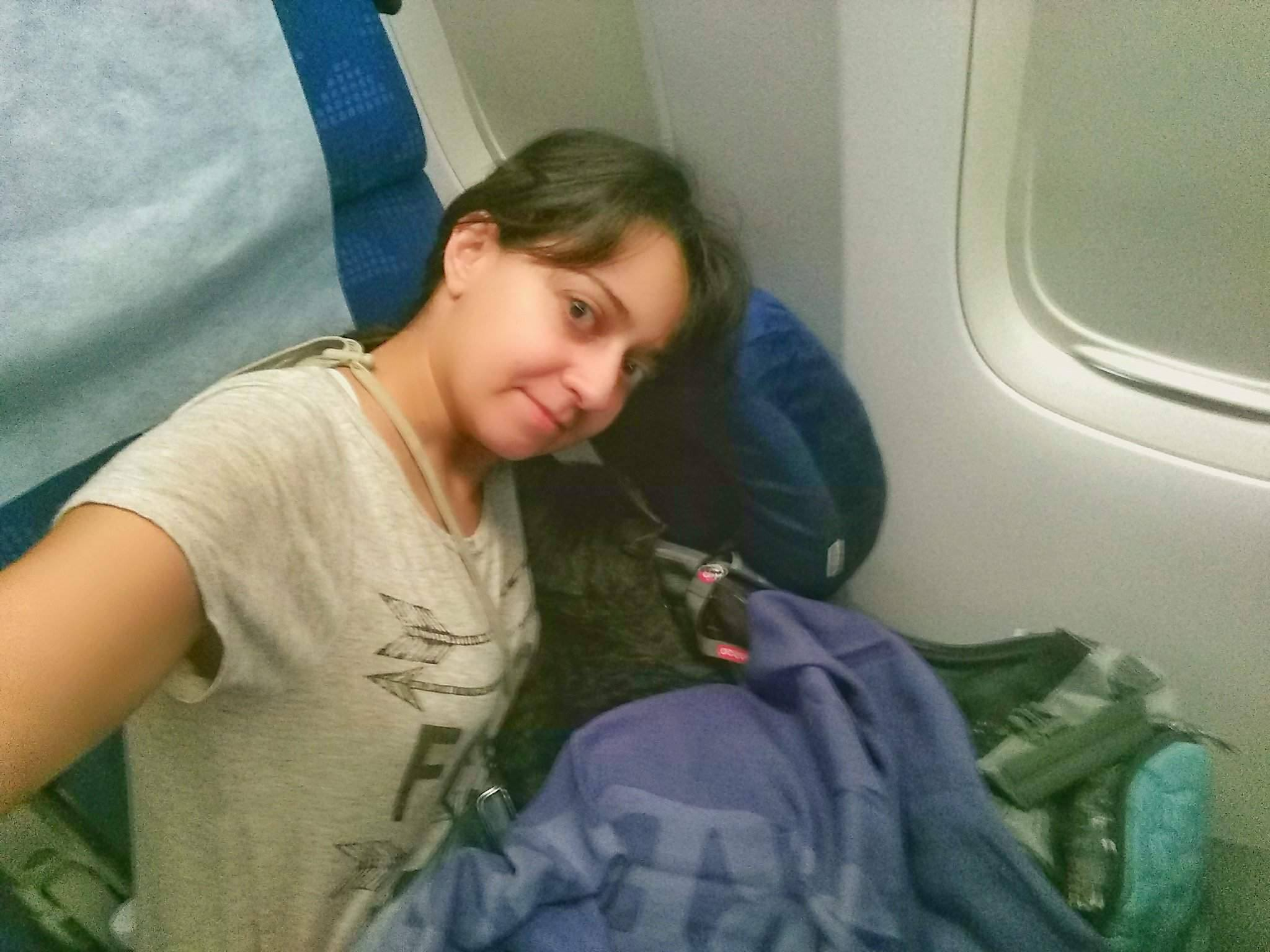 flying with a cat from Thailand to US
