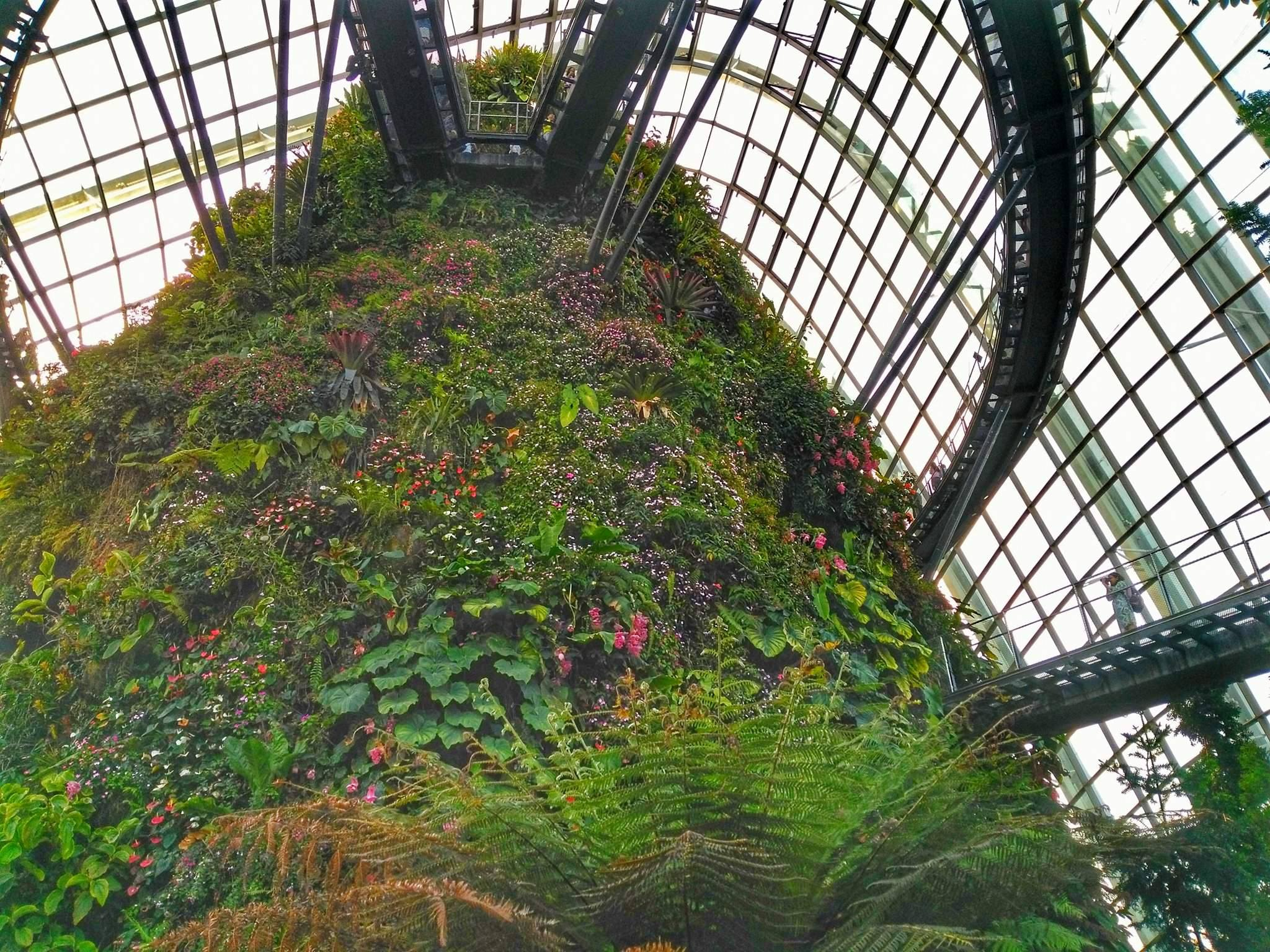 Singapore must see - Cloud Forest Conservatory