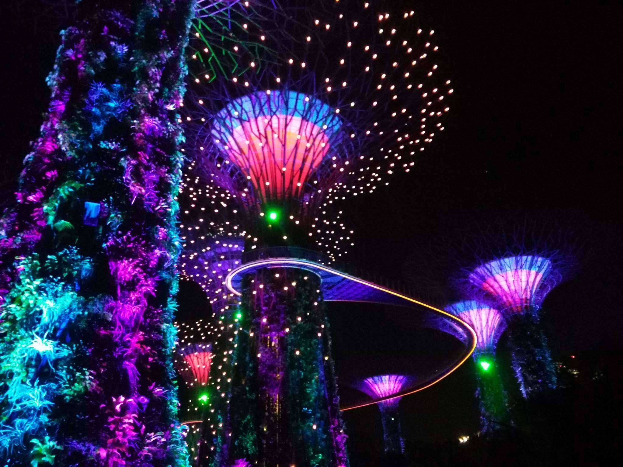 Singapore must see and do - Garden Rhapsody Light and Sound Show