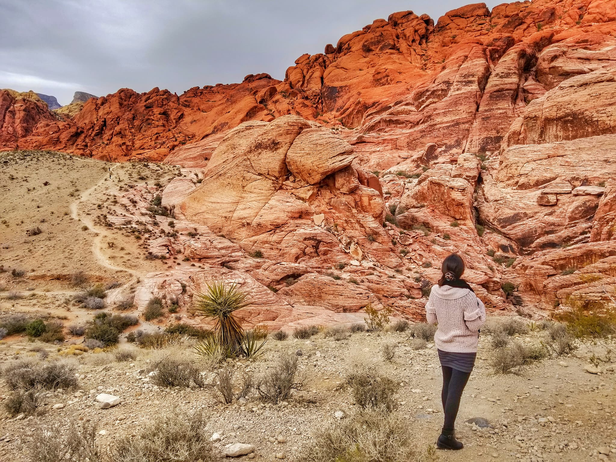 fun things to do in Las Vegas for couples - Red Rock Canyon