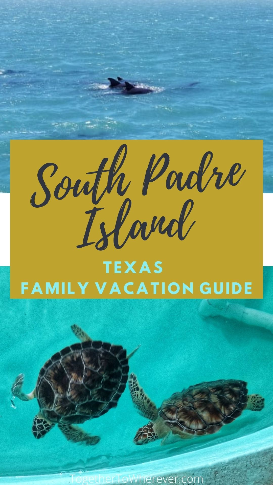 Things to do South Padre Island